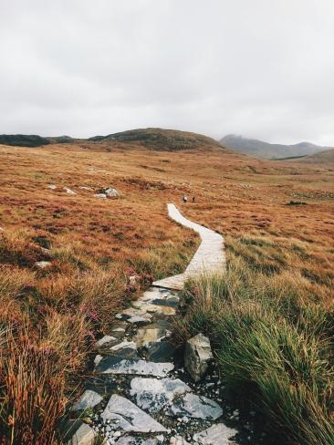 Connemara Nationalpark Natur Irland