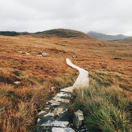 Connemara Nationalpark Natur Irland
