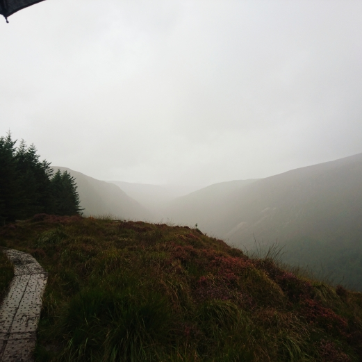 Wicklow Mountains Nationalpark Irland Dublin