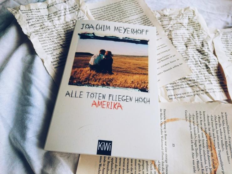 Joachim-Meyerhoff-Alle-Toten-fliegen-hoch-Amerika