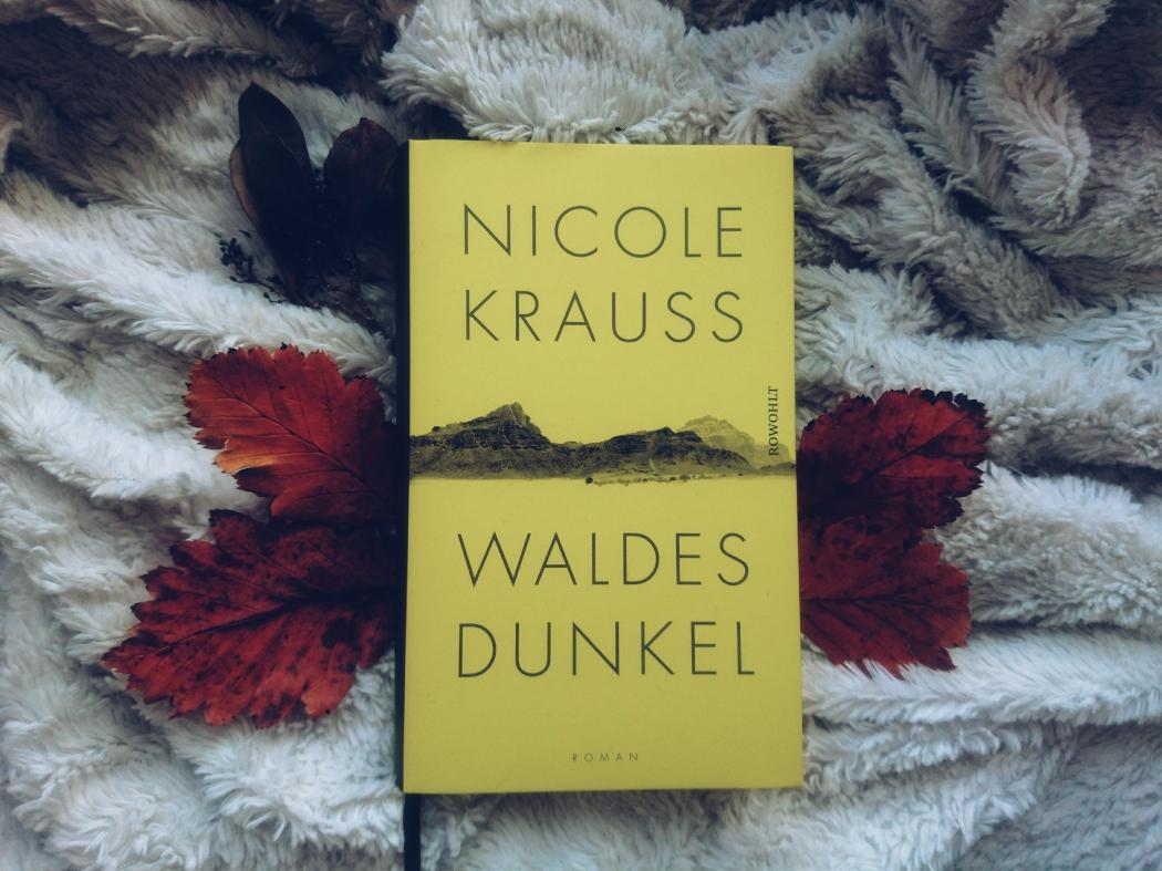 Nicole Krauss Waldes Dunkel Rezension