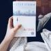 Kurz und knackig: Blitzeis (Peter Stamm)