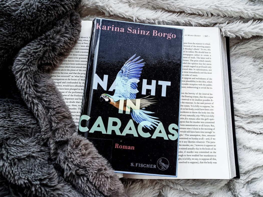 Karina Sainz Brogo Nacht in Caracas Rezension